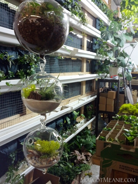 Boskke Sky Planters BY NATURE