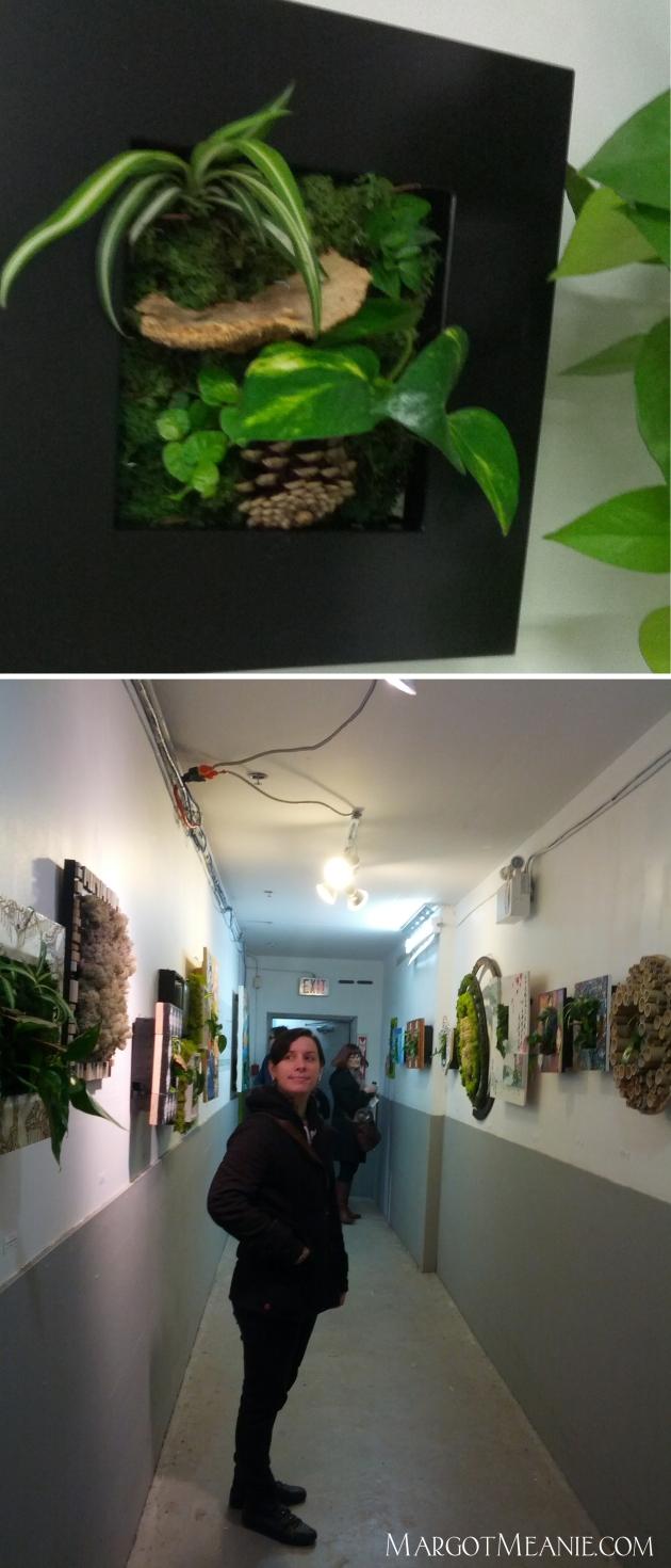 By Nature and Amanda Meowzen