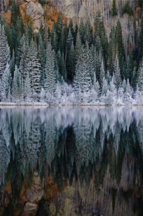 winters reflection