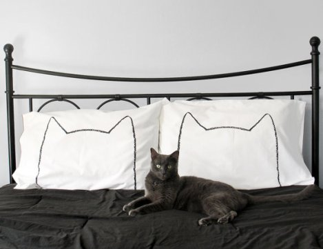 Cat nap pillow case set by Xenotees