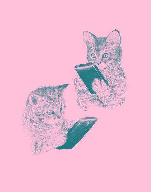 kittens texting by laser bread